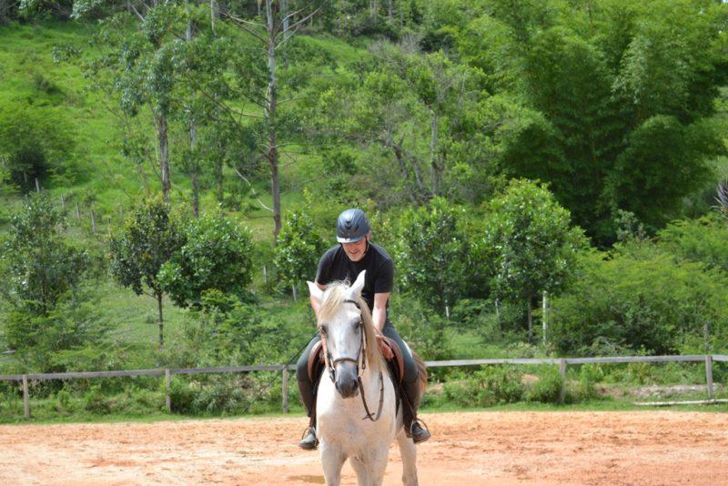 Montar cavalo é muito mais que só montar, como leigo aprendi isso
