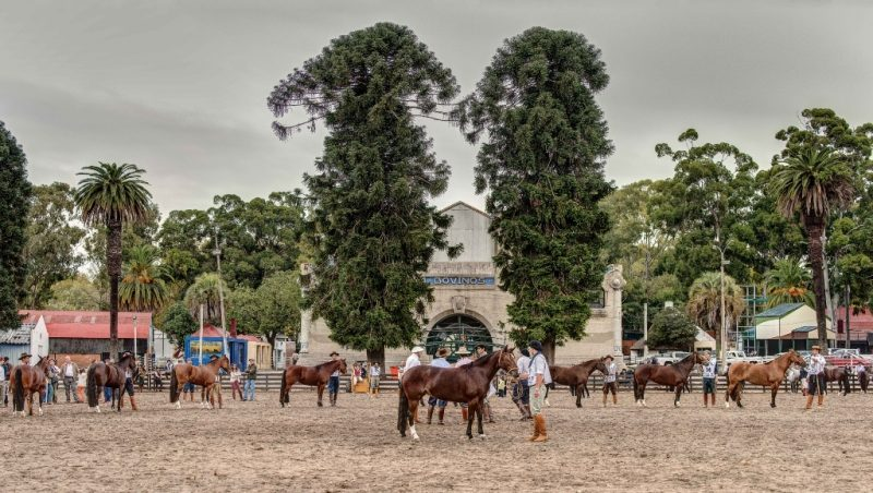 Classificatória em Montevidéu também promove integração entre brasileiros e uruguaios