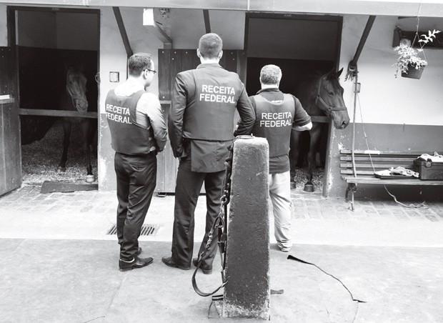 Sangue impuro, operação policial investiga sonegação na importação de cerca de mil cavalos, Foto Corbis, Latinstock