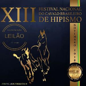 LEILÃO DO XIII FESTIVAL NACIONAL DO CAVALO BH