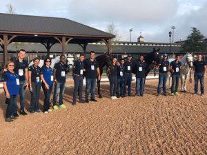 Cavalos do adestramento e equipe após aprovação na inspeção veterinária