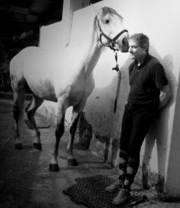 Depressão e o cavalo