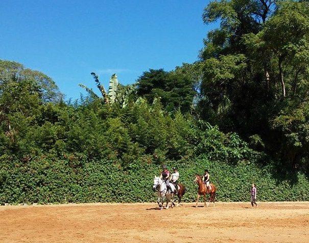 Workshop equestre, aula de montaria, hipismo, equitação