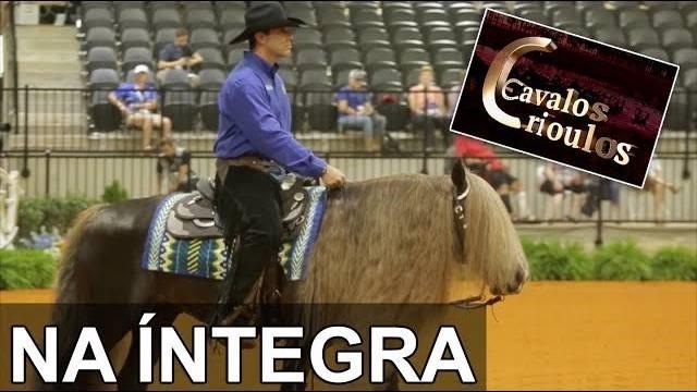 Programa Cavalos Crioulos Oficial no Jogos Equestres Mundiais
