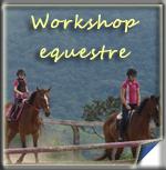 Workshop Equestre