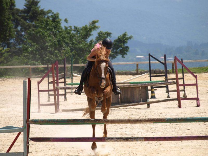 Cavalos tem memória muscular, Thaty Vidal e Biscoito TMV
