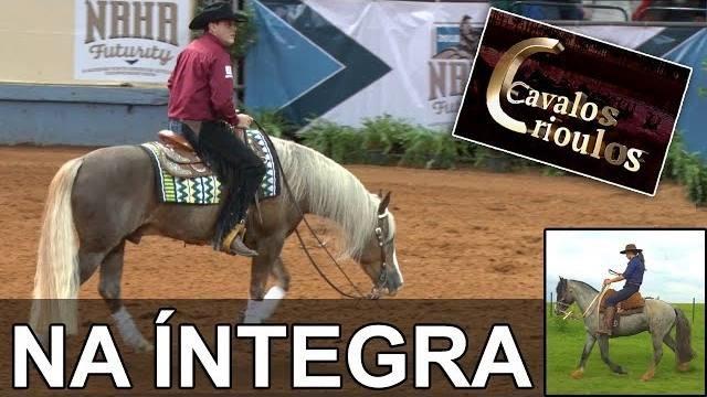 Programa Cavalos Crioulos de 16-12-2018