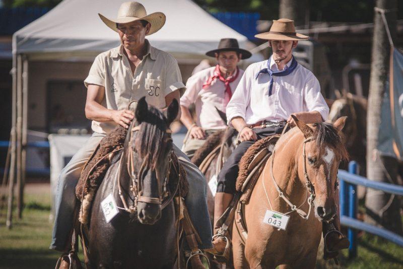 Cavalo Crioulo - Crédito Fagner Almeida ABCCC