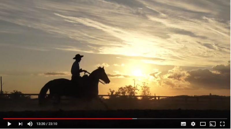 Porgrama Cavalos Crioulos de 17 de março