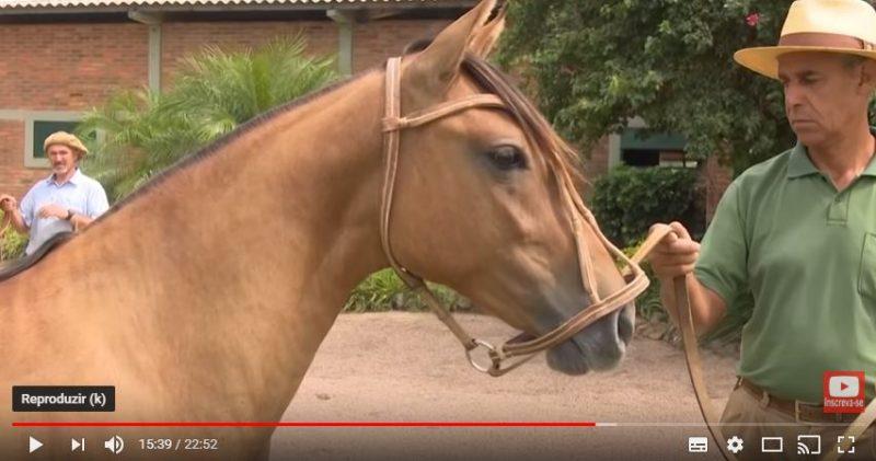 Programa Cavalo Crioulo Sem Fronteiras - 09-03