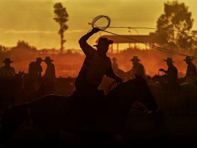 Esteio recebe final nacional do Tiro de Laço do Cavalo Crioulo