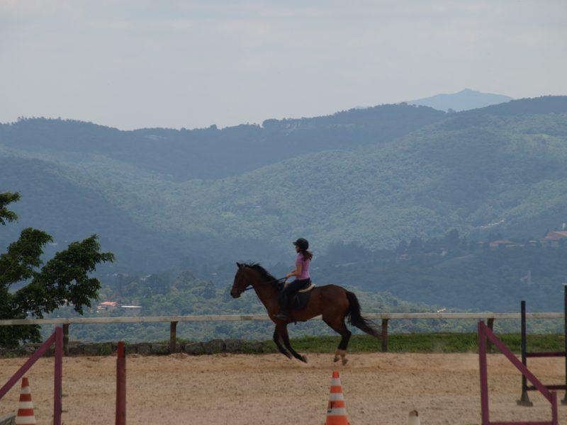 Laser e os esportes equestres