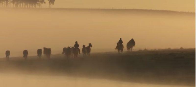 Programa Cavalo Crioulo sem Fronteiras do dia 06 de abril