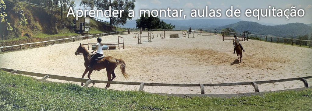 Thaty Aulas de equitação Haras Funchal