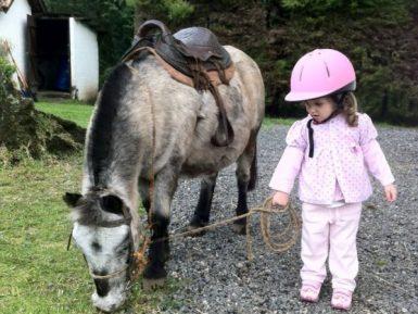 Como os capacetes de equitação protegem sua cabeça