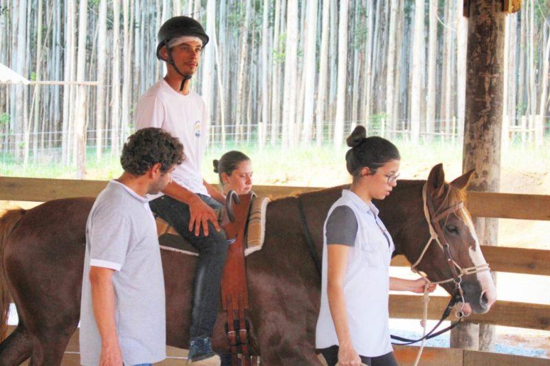 Terapia com Cavalos Crioulos auxilia sociabilidade de jovens em São Paulo
