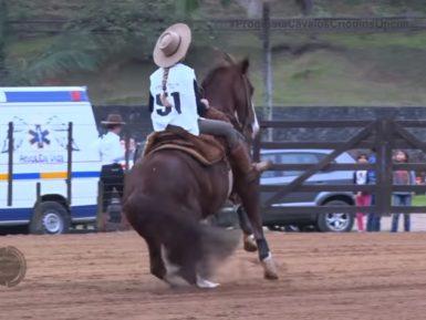 Programa Cavalos Crioulos de 19/05/2019