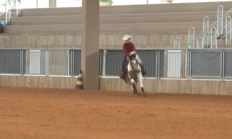 Programa Cavalo Crioulo sem Fronteiras do dia 15 de junho