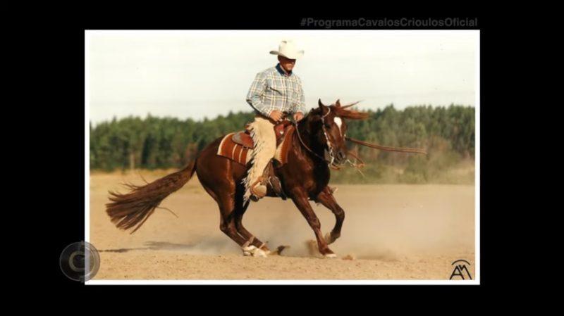 Programa Cavalos Crioulos de 16-06-2019