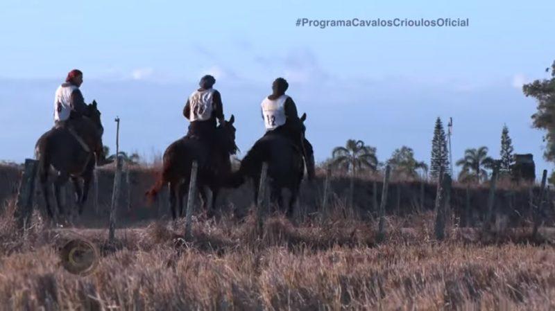 Programa Cavalos Crioulos de 14-07-2019
