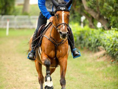 Time Brasil de Concurso Completo de Equitação (CCE) estreia no Pan de Lima