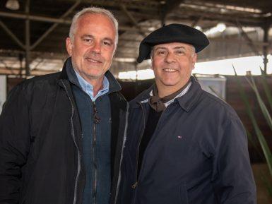 Prova na Europa mostrará potencial do Cavalo Crioulo