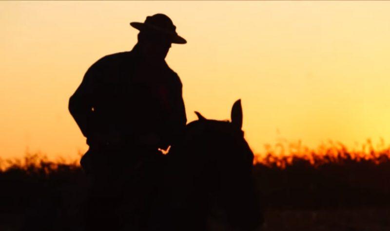 Programa Cavalo Crioulo sem Fronteiras do dia 10 de agosto