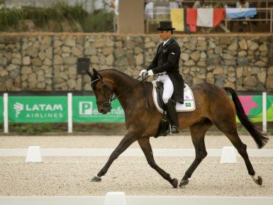 Time Brasil de Concurso Completo tem boa atuação e vira em 3º lugar após o adestramento