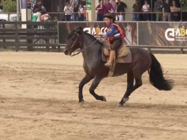 Programa Cavalo Crioulo sem Fronteiras do dia 07 de setembro