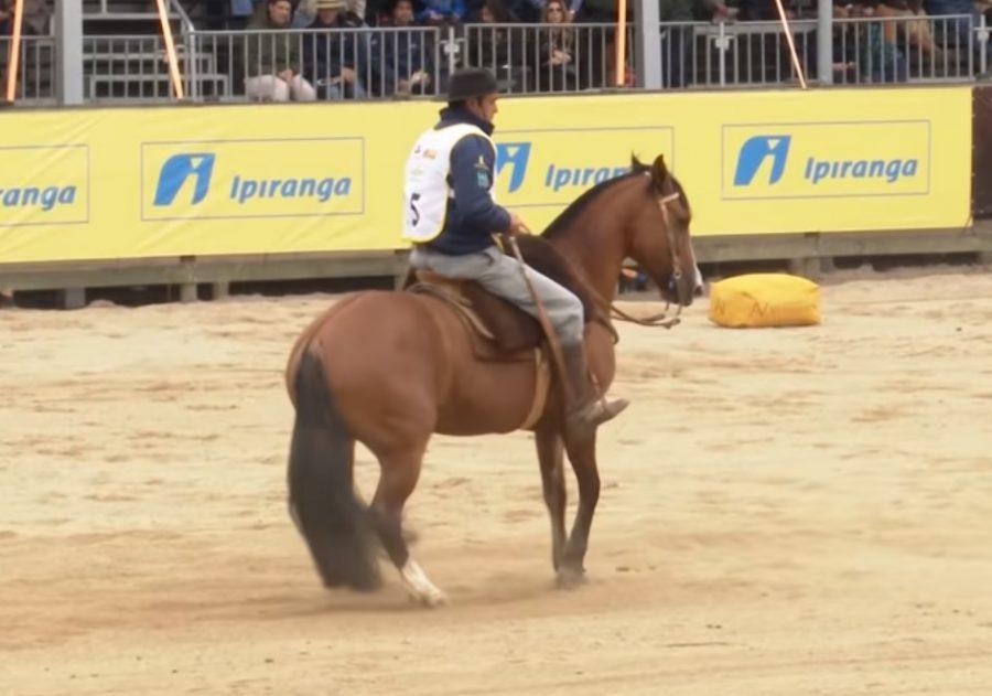 Programa Cavalo Crioulo sem Fronteiras do dia 26 de outubro de 2019
