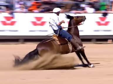 Programa Cavalo Crioulo sem Fronteiras do dia 28 de setembro