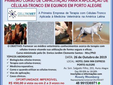 Tratamento com células-tronco resulta na eficiência dos equinos