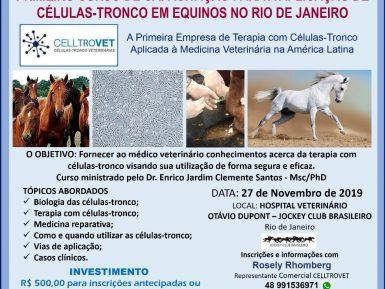 Rio de Janeiro – Curso de  Capacitação em Células-Tronco em Equinos