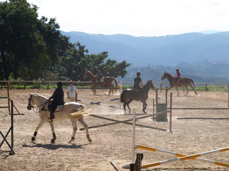 Aulas de equitação