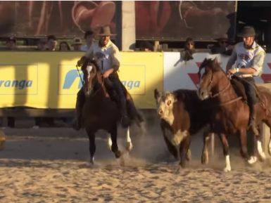 Programa Cavalo Crioulo sem Fronteiras do dia 09 de novembro de 2019