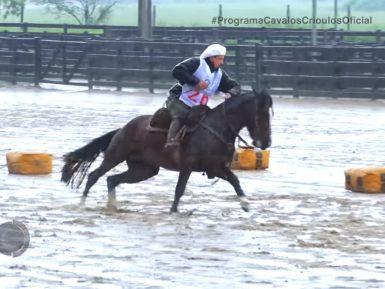 Programa Cavalos Crioulos 3 de outubro