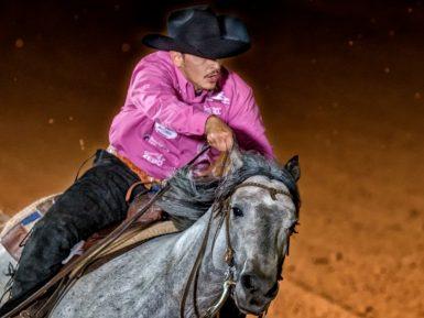 Rédeas de Ouro leva para pista consolidação do Cavalo Crioulo na modalidade